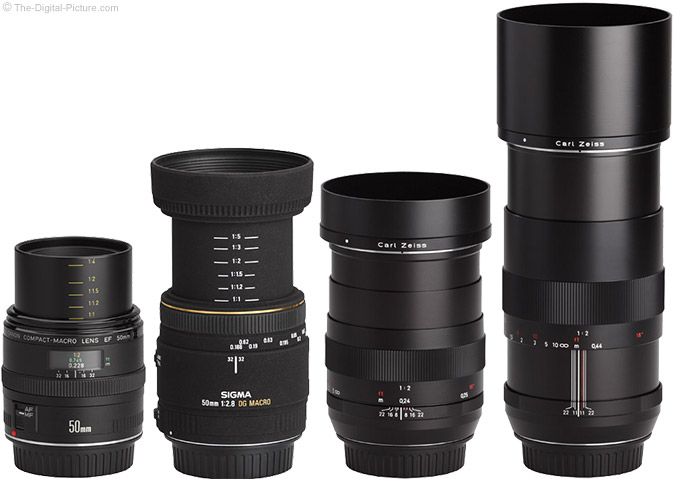 Zeiss 50mm f/2.0 Makro-Planar T* ZE Lens Compared to Similar Lenses with Hoods