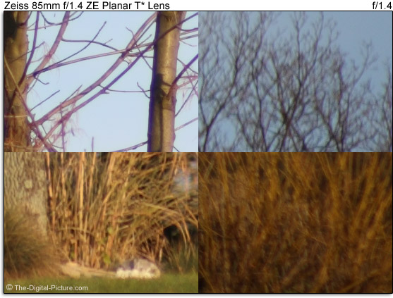 Zeiss 85mm f/1.4 ZE Planar T* Lens Flare Comparison