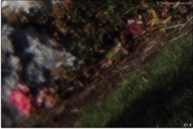 Zeiss Milvus 50mm f/1.4 Lens Sharpness Comparison Example
