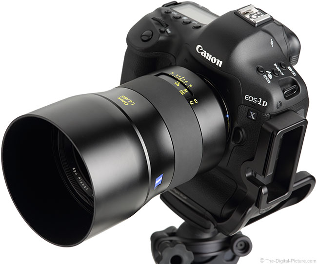 Zeiss Otus 85mm f/1.4 Lens on Canon EOS-1D X with Hood