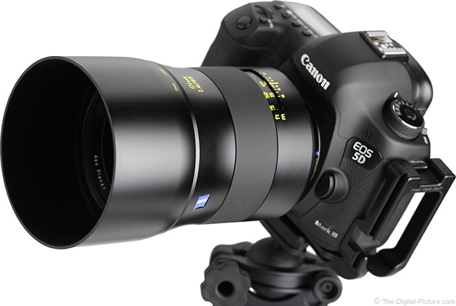 Zeiss Otus 85mm f/1.4 Lens on Canon EOS 5D Mark III Angle