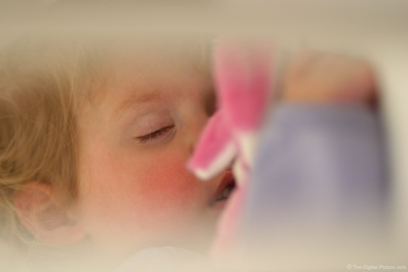 Little Girl Sleeping with Easter Bunny Picture