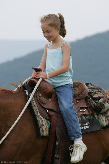 Horseback Riding Picture