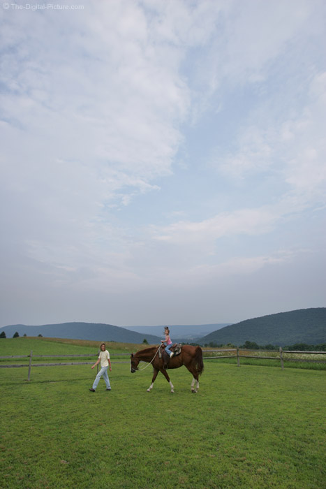 Horseback Riding in the Ring Picture