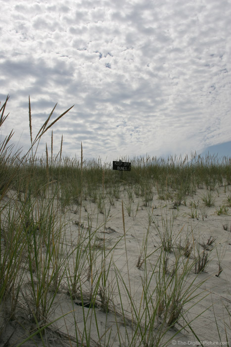 Clouds, Dunes and Grass Picture