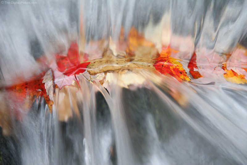 Leaves Trapped Under Waterfall Picture