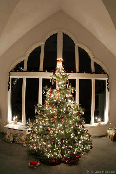 Glowing Christmas Tree Picture