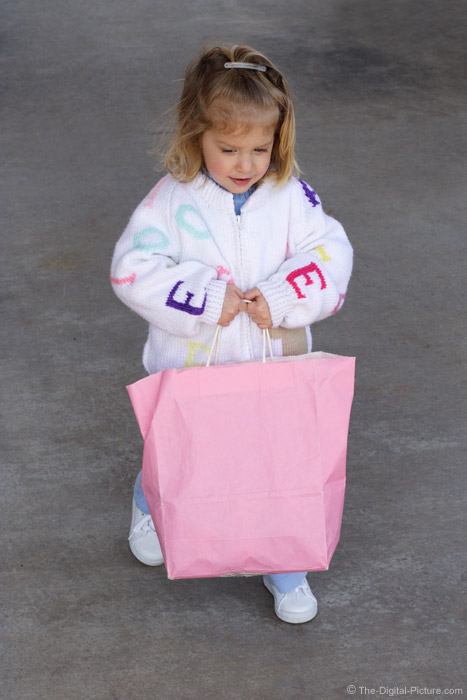 Little Girl Carrying Bag Picture