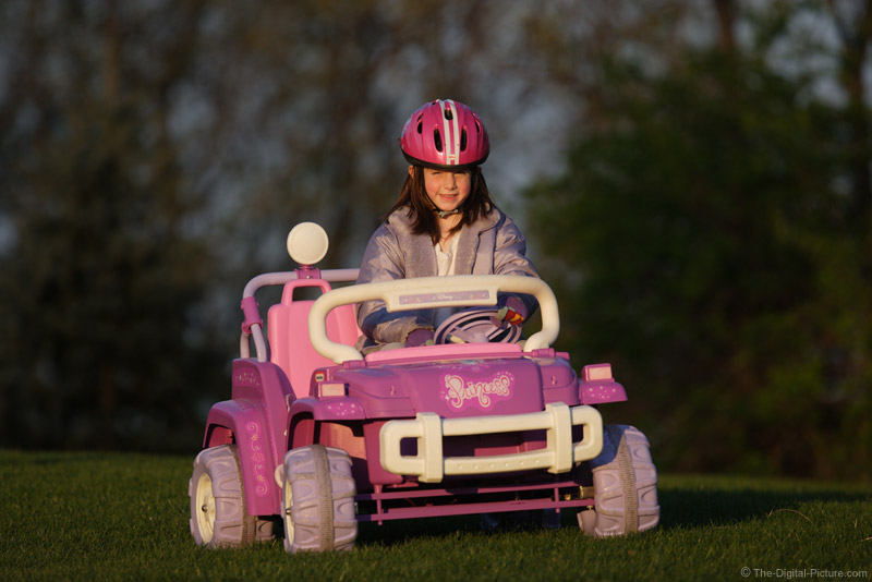 Driving the Princess Car Picture