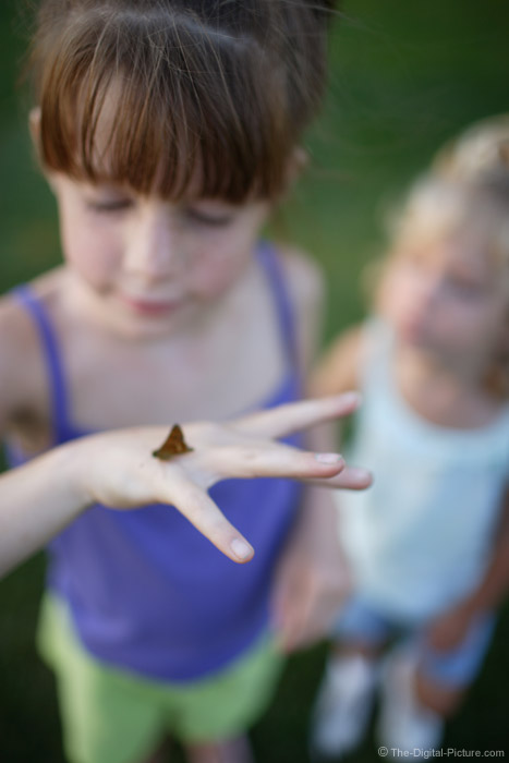 Little Girls and a Butterfly Picture