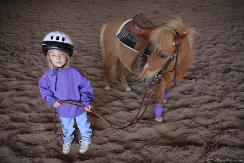 A Girl and A Pony Picture