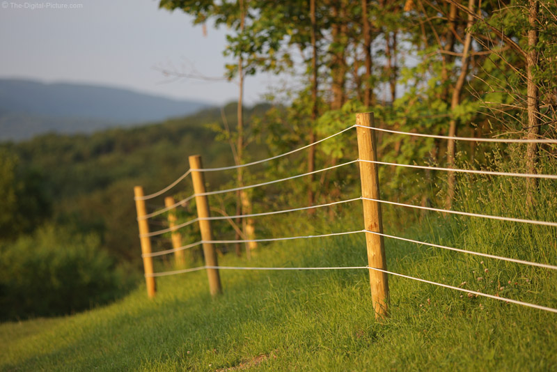 Fence at Sunset Picture