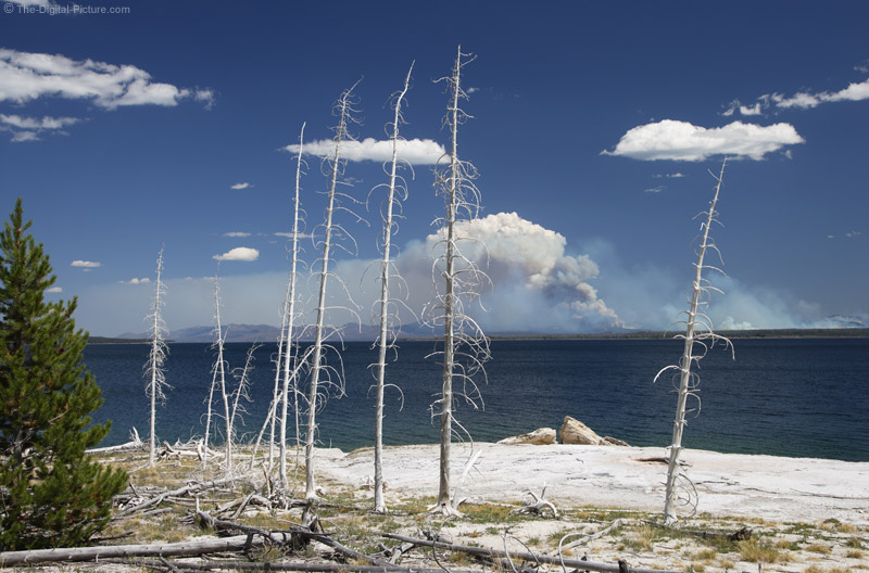 Forest Fire Across Yellowstone Lake