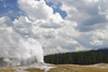 Old Faithful Geyser Erupting Picture