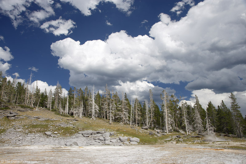 Clouds, Trees and Thermal Area