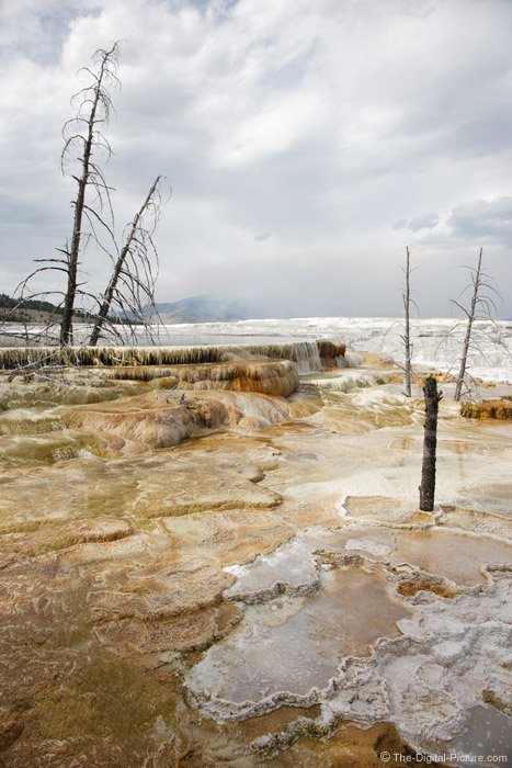 Mammoth Hot Springs Picture