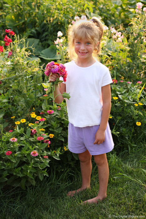 Picking Flowers - 50mm