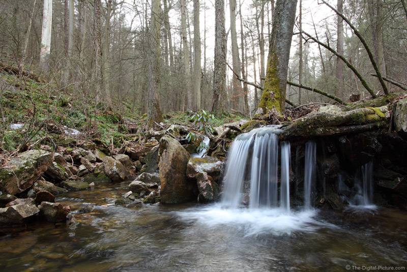 Swift Run Waterfall, Tall Timbers Natural Area