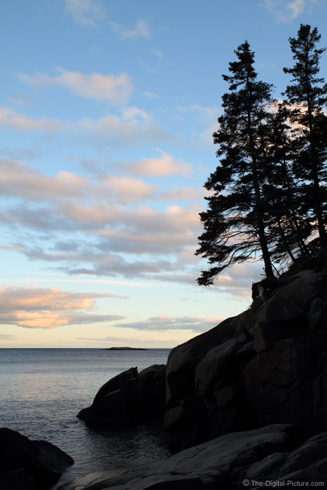 Acadia National Park Silhouette