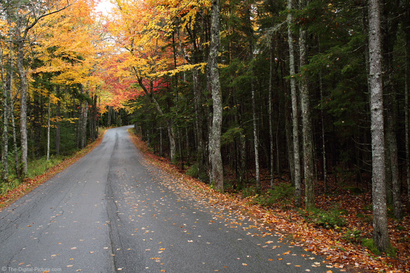 Back Road in the Fall Picture