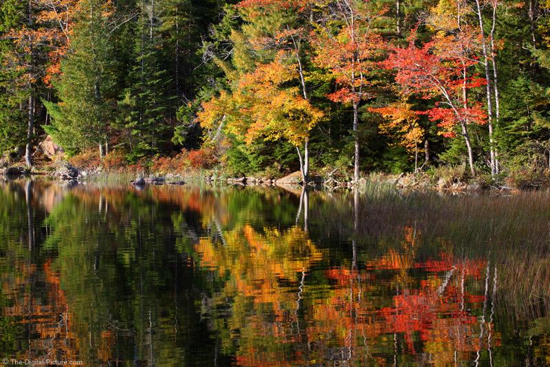 Fall Foliage Reflecting on Eagle Lake
