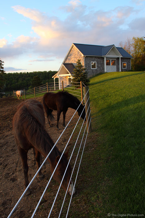 Fence, Horses and a Barn