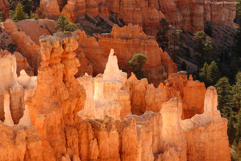 Reflected Light Hoodoos in Bryce Canyon