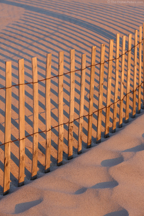 Sand Fence, Island Beach State Park, NJ