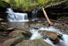 R.B. Ricketts Falls, Ricketts Glen SP