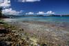 Colors of Salomon Bay, St. John