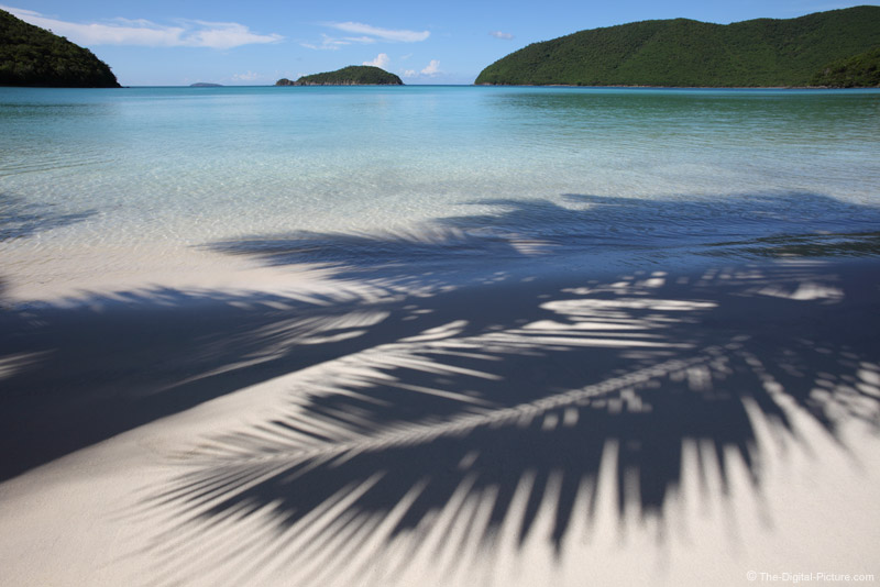 Palm Shadows on Beach at Maho Bay