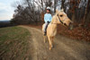 Riding an American Quarter Horse