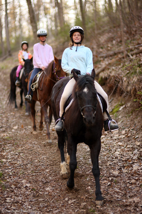 Trail Riding Picture