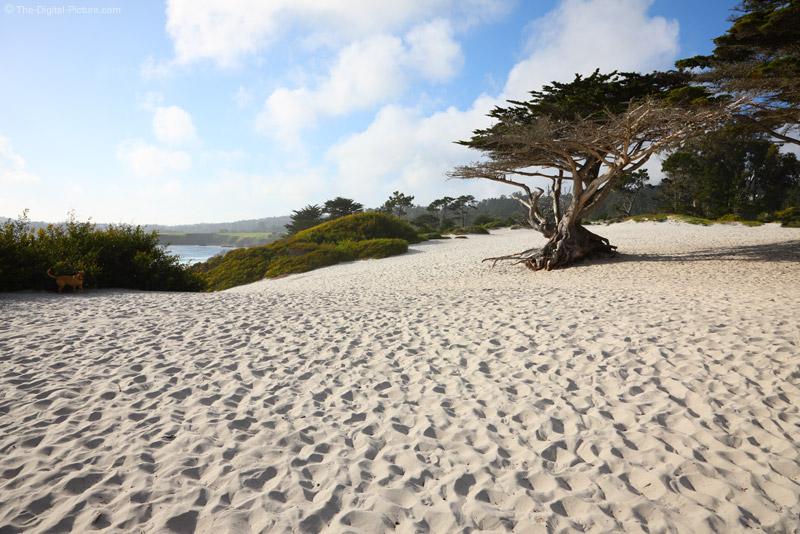 Carmel Beach, California