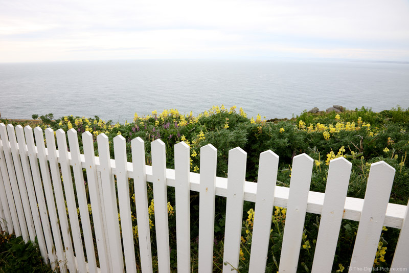 White Picket Fence, Point Reyes National Seashore
