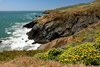 Tennessee Cove, California