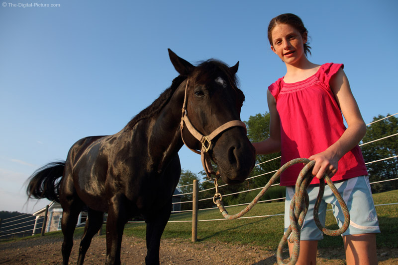 Girl and Her Black Horse
