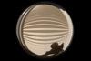 Circular Fisheye Lines