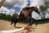 Fisheye Perspective of Horse Jumping
