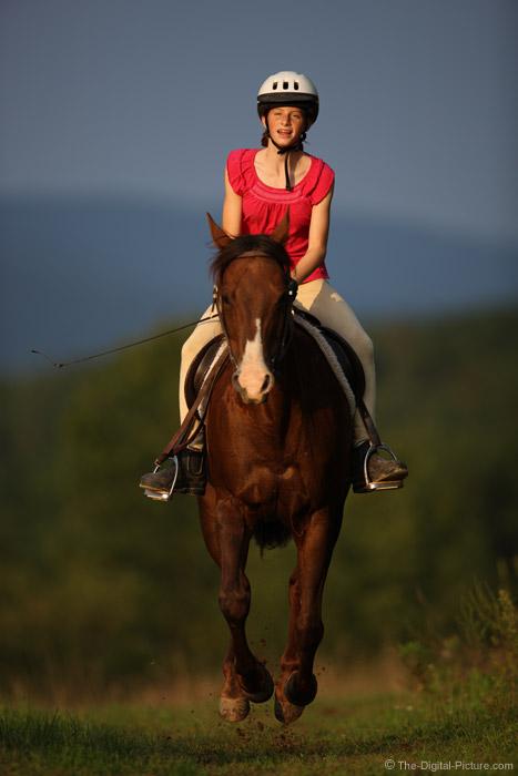 Flying Quarter Horse