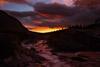 Swiftcurrent Creek Sunrise, Glacier National Park