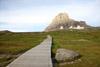 Boardwalk at Logan Pass