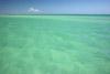 Florida Keys Serenity