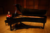Playing the Steinway