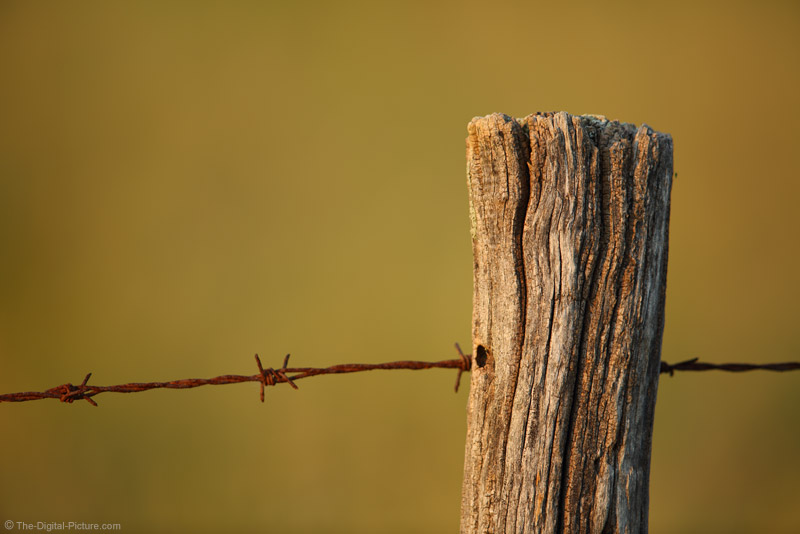 Old Fence Post and Rusty Barbed Wire