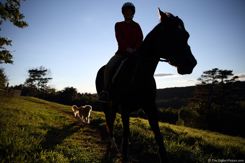 Silhouetted Horse, Rider & Dog