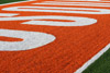 University Football Field End Zone