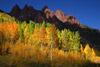 Brilliant Aspens in front of Sievers Mountain, Maroon Bells