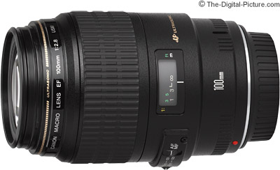 Canon EF 100mm f/2.8 USM Macro Lens Review