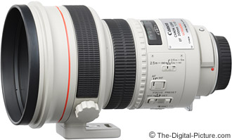 Canon EF 200mm f/1.8 L USM Lens Review